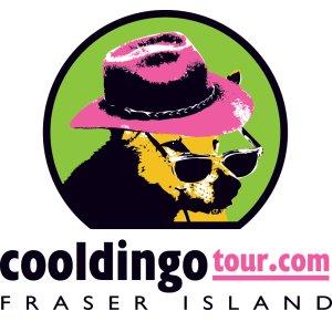 cool dingo logo