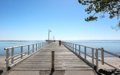 5 of the Best Things to Do in Hervey Bay